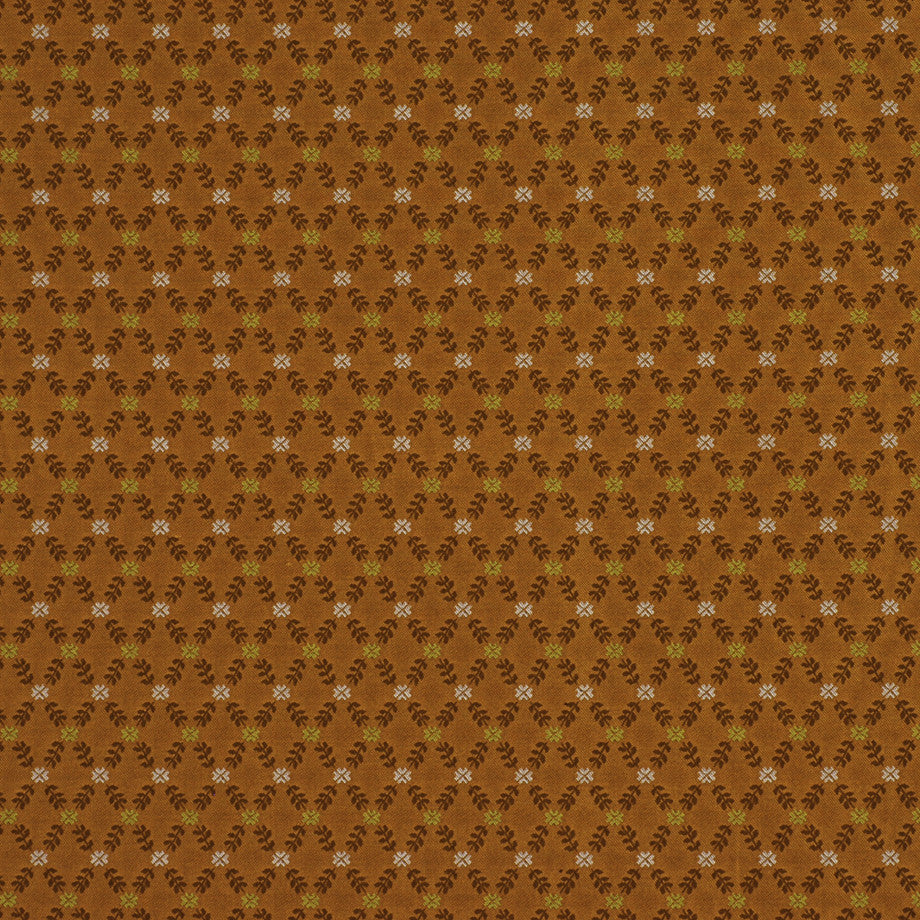 TRANSITIONS Lisbeth Floral Fabric - Apricot