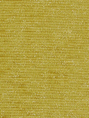 SOLIDS / TEXTURES Just Perfect Fabric - Honey
