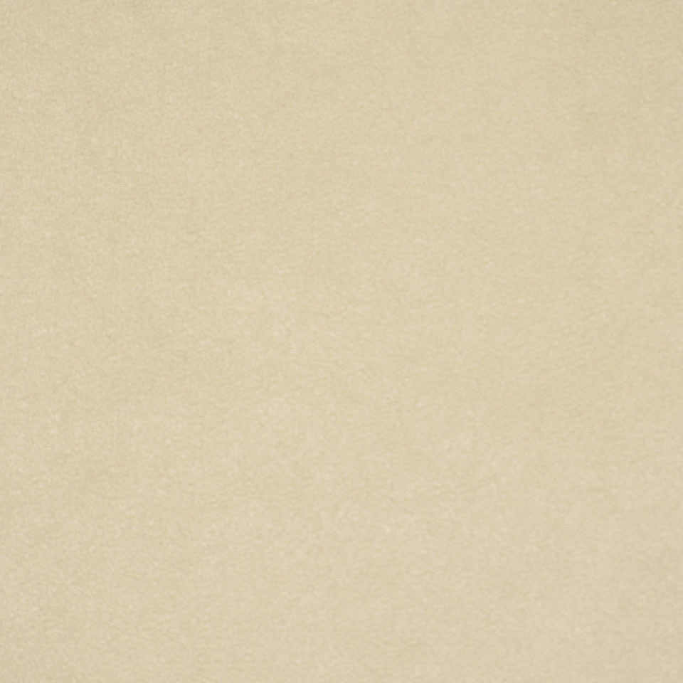 CORPORATE BINDER: PERFORMANCE/FINISHES DECORATIVE/UPH SOLIDS AND TEXTURES/ECO I Sensuede II Fabric - Vanilla