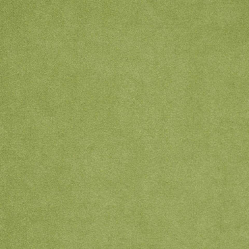 CORPORATE BINDER: PERFORMANCE/FINISHES DECORATIVE/UPH SOLIDS AND TEXTURES/ECO I Sensuede II Fabric - Romaine
