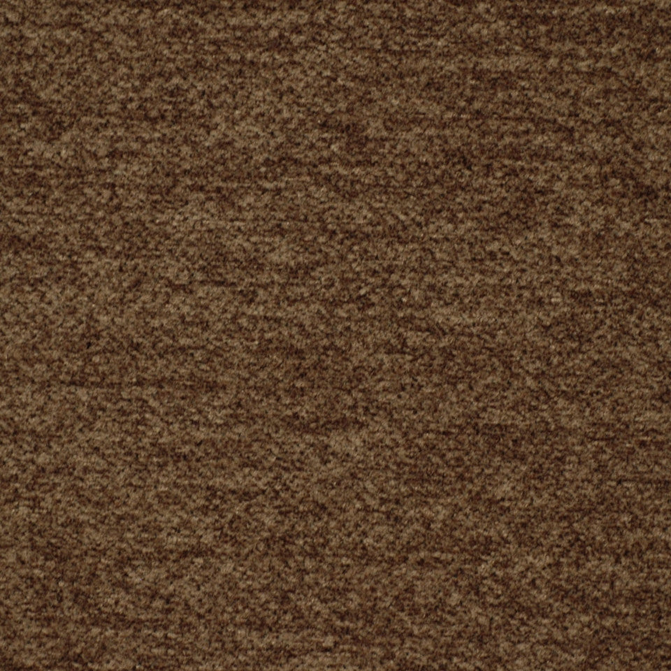 DARK NEUTRAL Sunrise Beauty Fabric - Smoke