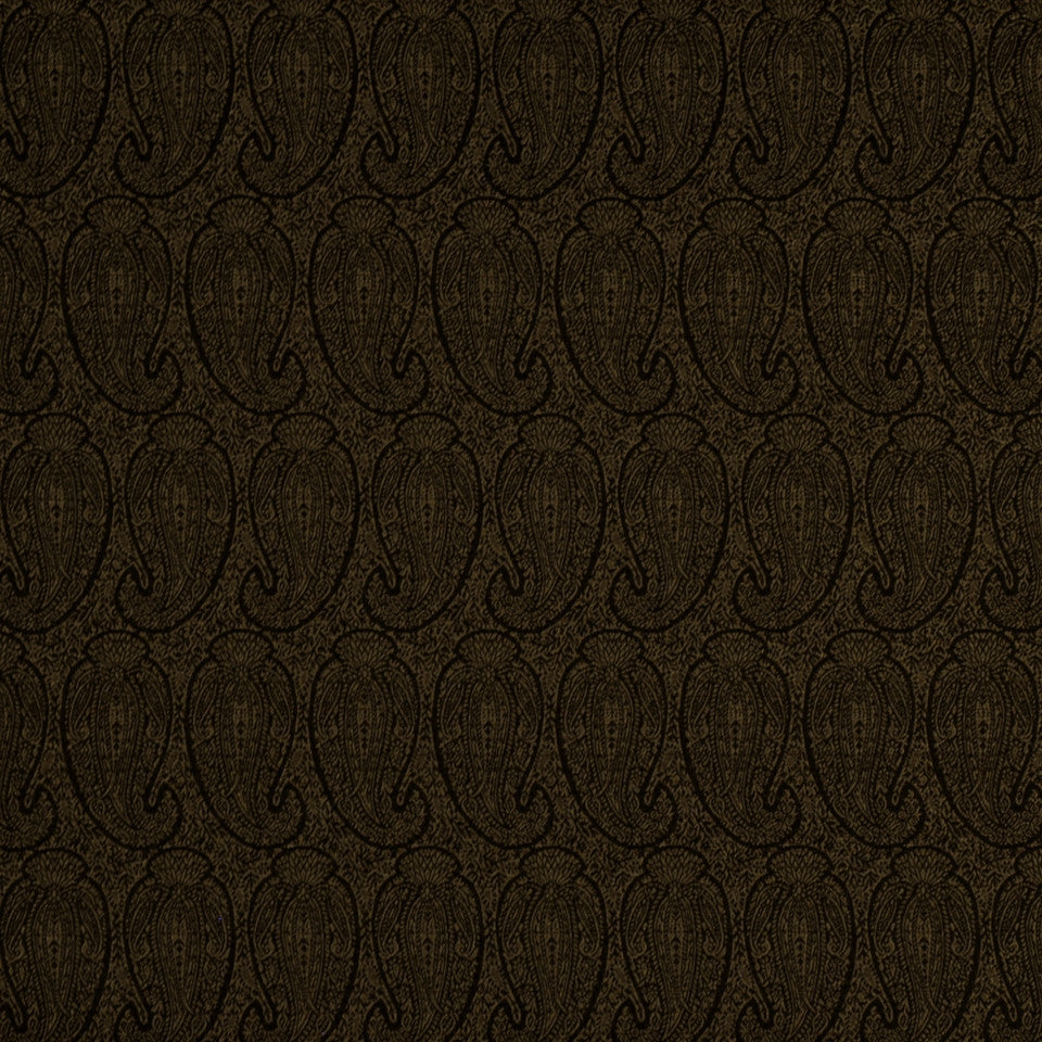 CORPORATE BINDER: PERFORMANCE/FINISHES DECORATIVE/UPH SOLIDS AND TEXTURES/ECO I Eco Paisley Fabric - Espresso