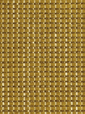 GOLDENROD Crewcut Fabric - Goldenrod