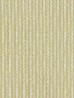 Outline Fabric - Citron