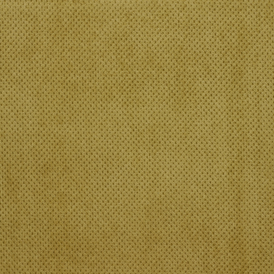 PERFORMANCE CHENILLES Plush Softy Fabric - Tarragon