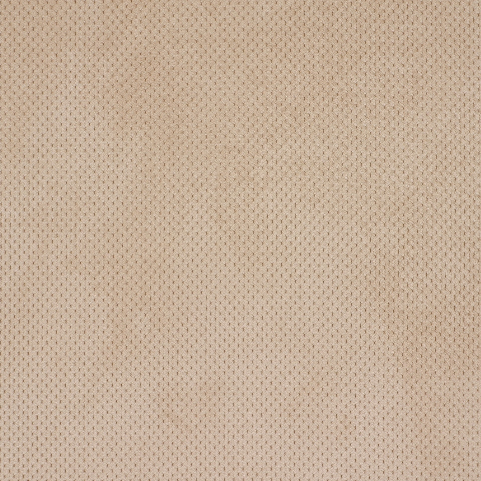 PERFORMANCE CHENILLES Plush Softy Fabric - Vanilla