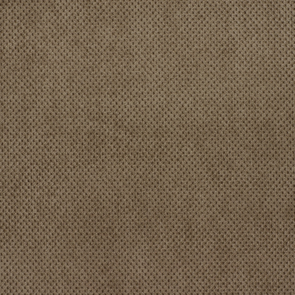PERFORMANCE CHENILLES Plush Softy Fabric - Powder