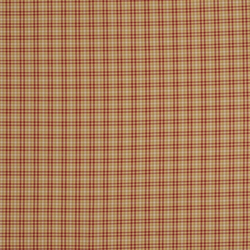 WARM Picnic Fun Fabric - Ruby