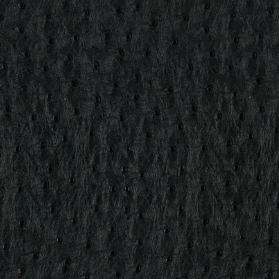 NIGHT SKY Harvest Moon Fabric - Black