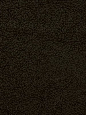 PERFORMANCE VINYLS Loggins Fabric - Black
