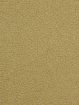 PERFORMANCE VINYLS Loggins Fabric - Sand