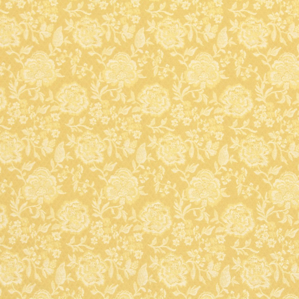 HONEYSUCKLE Buzzy Boy Fabric - Honeysuckle