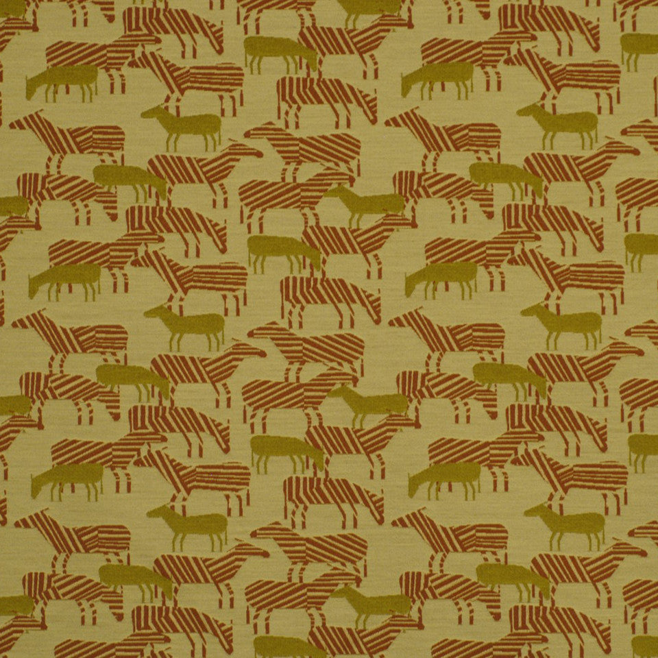 DWELLSTUDIO HEALTHCARE Zebra Safari Fabric - Carrot