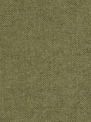 SURF-SAND-DUSK Revolutionary Fabric - Green Tea