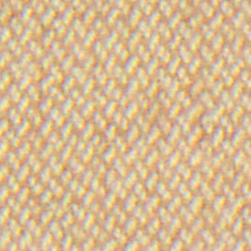 WOOL TEXTURES Wool Flannel Fabric - Sand