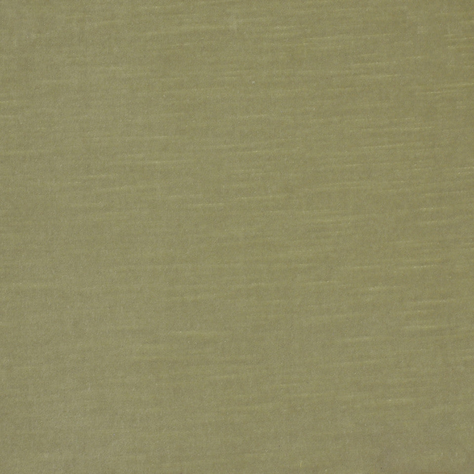 COTTON VELVETS Contentment Fabric - Celery