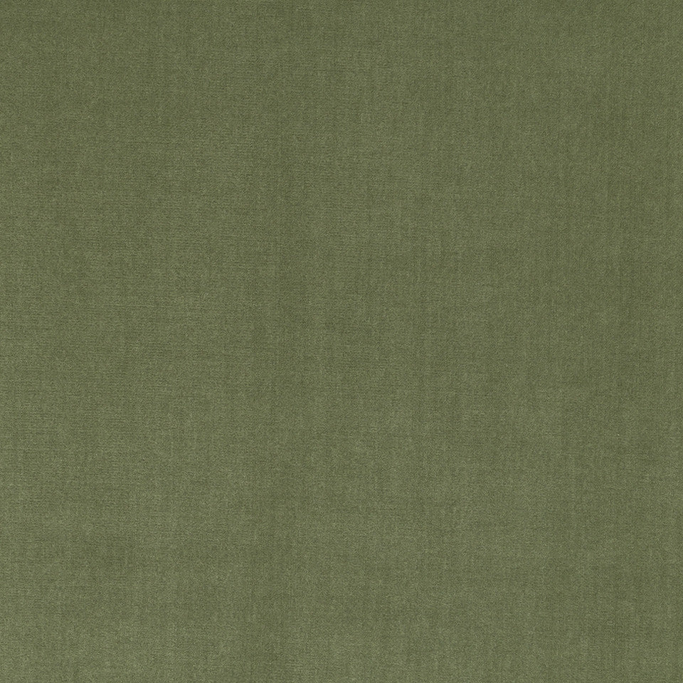 COTTON VELVET SOLIDS Lady Elsie Fabric - Sage
