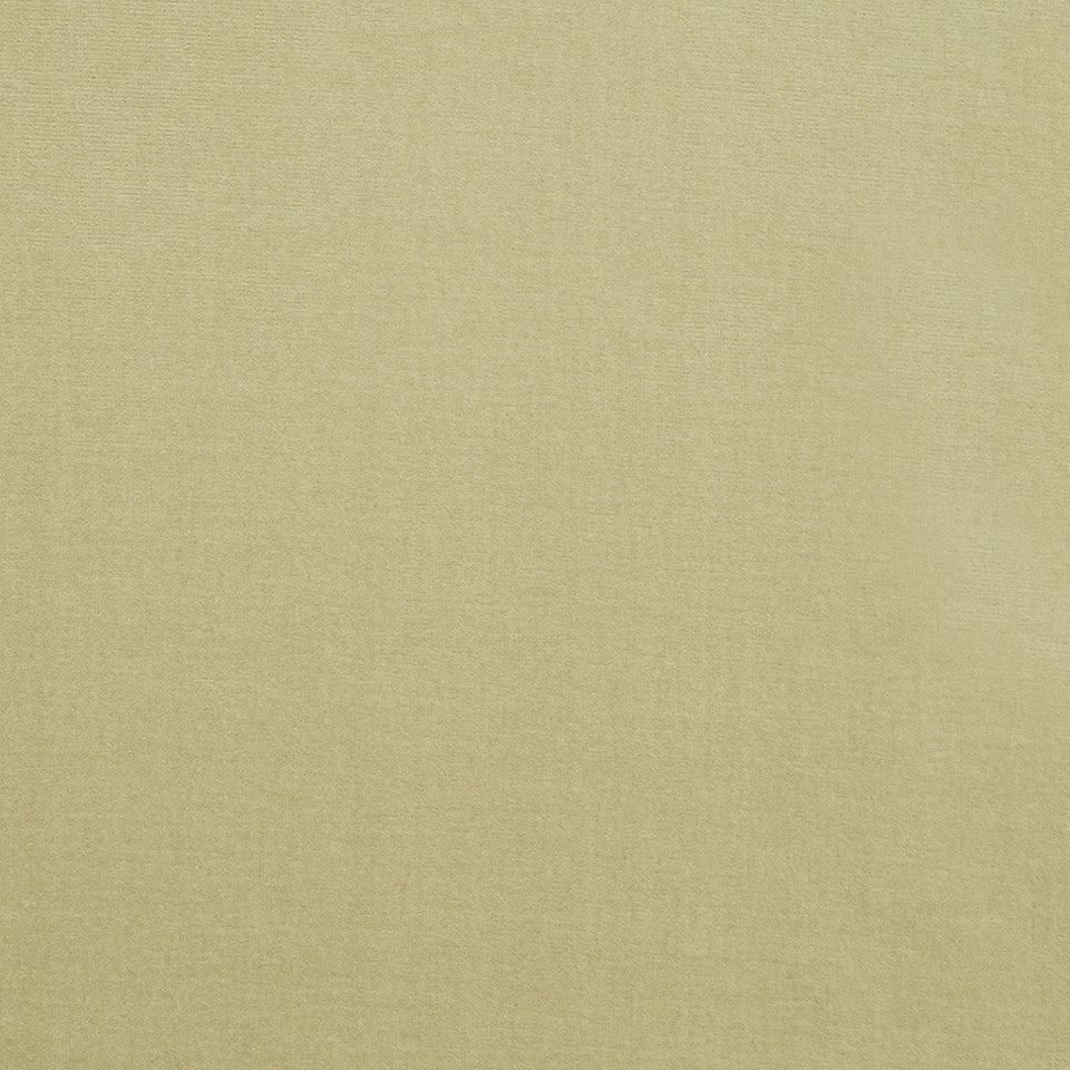 COTTON VELVET SOLIDS Lady Elsie Fabric - Fawn