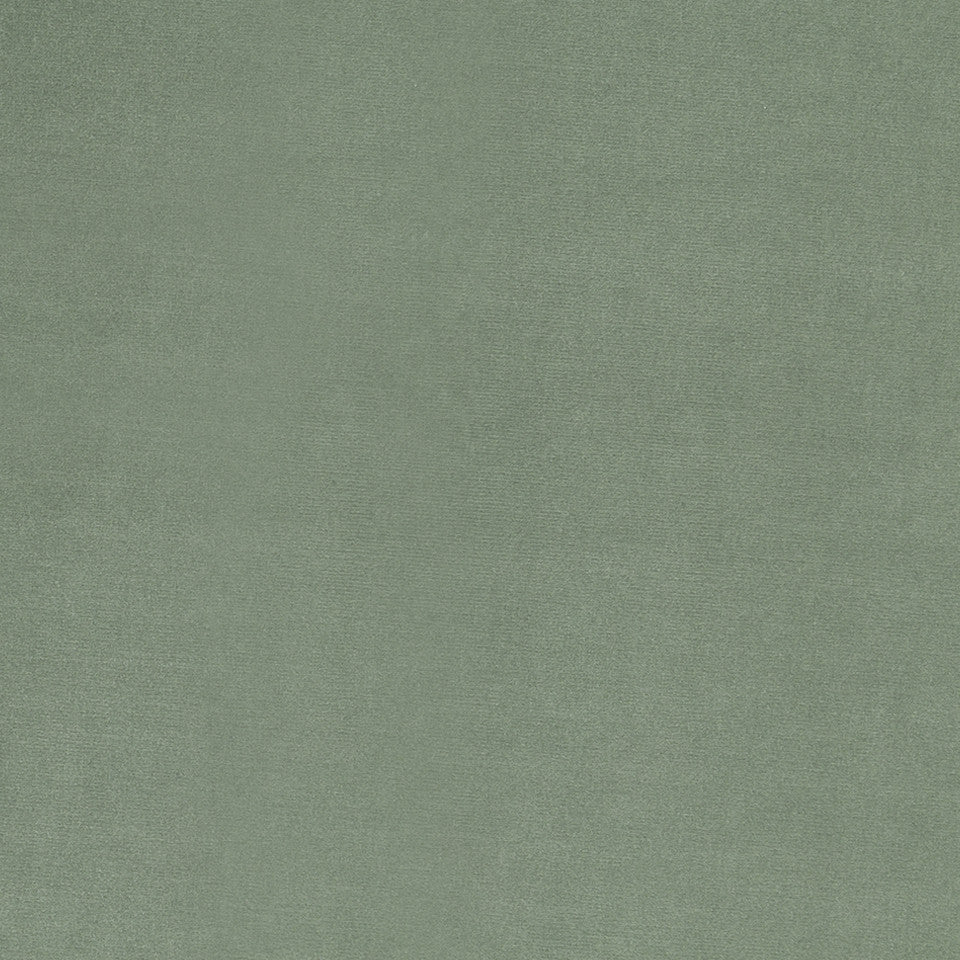 COTTON VELVET SOLIDS Lady Elsie Fabric - Seafoam