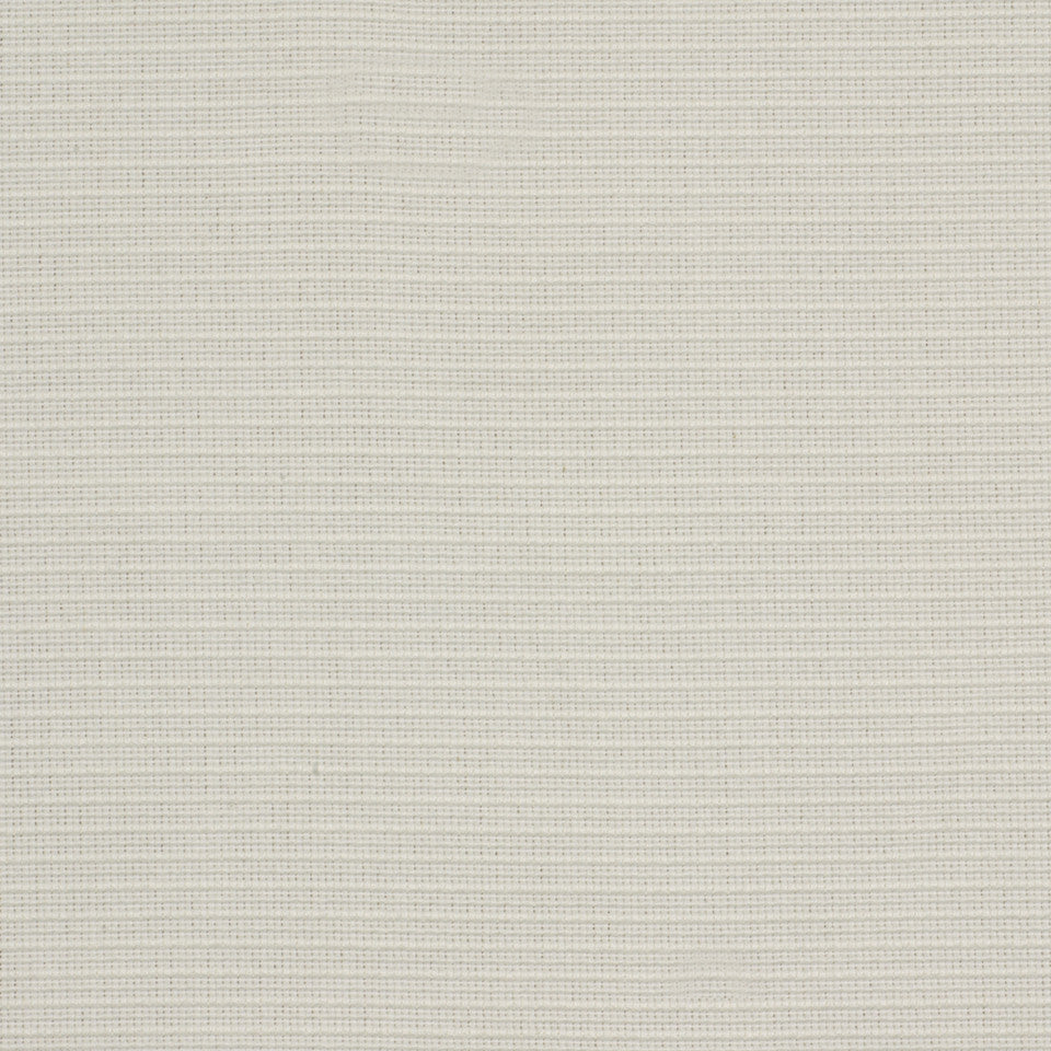 PERFORMANCE TEXTURES II Bel Esprit Fabric - Cloud