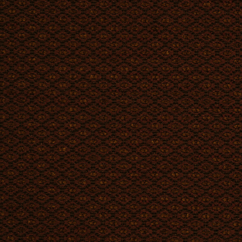 PERFORMANCE TEXTURES II Devine Path Fabric - Paprika