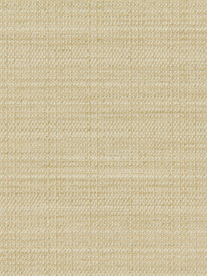 CRYPTON SOLID UPHOLSTERY Modern Canvas Fabric - Buff