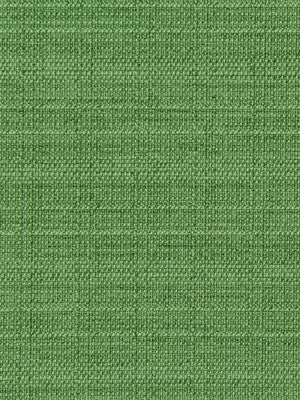 CRYPTON SOLID UPHOLSTERY Modern Canvas Fabric - Grass