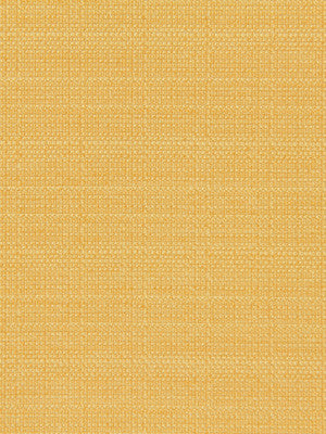 CRYPTON SOLID UPHOLSTERY Modern Canvas Fabric - Daffodil