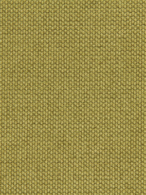 CRYPTON SOLID UPHOLSTERY Mini Stitch Fabric - Citron