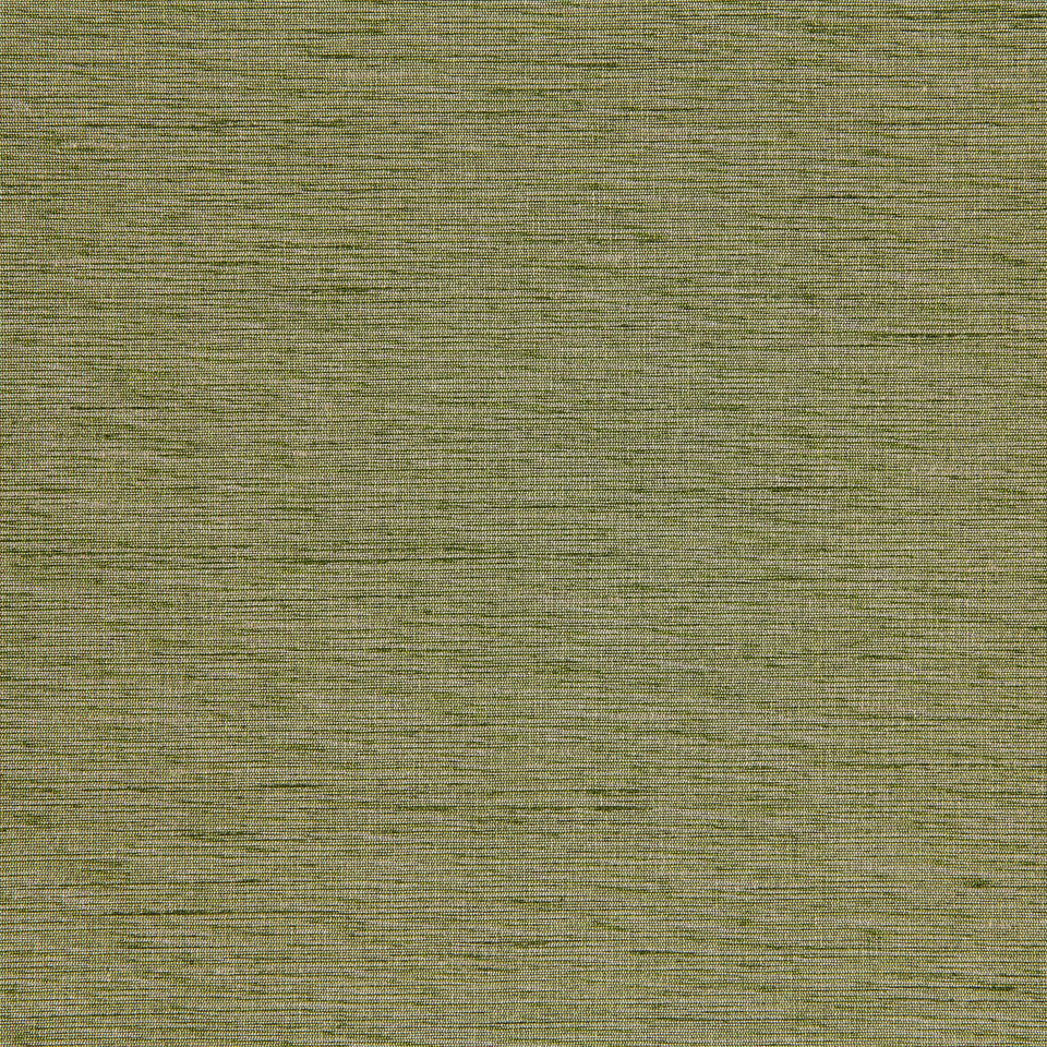 DECORATIVE SOLIDS Plain Elegance Fabric - Apple II