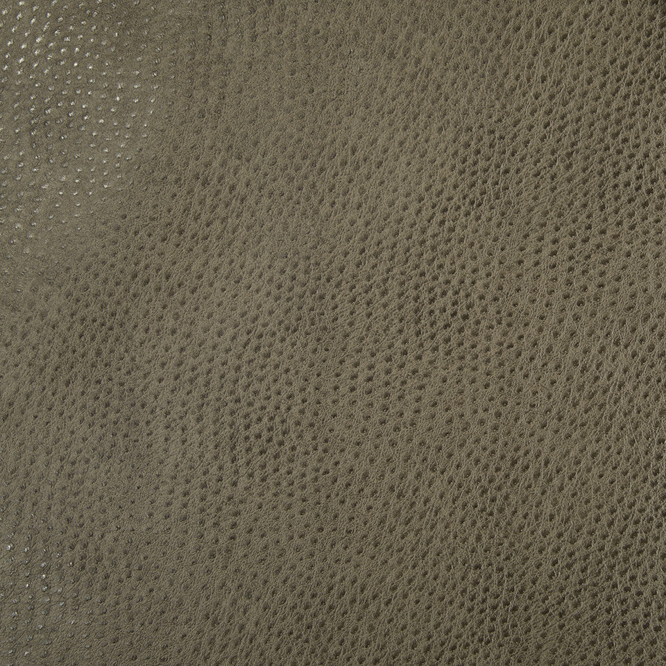 Faux Leather Textures Dongary Fabric - Squirrel