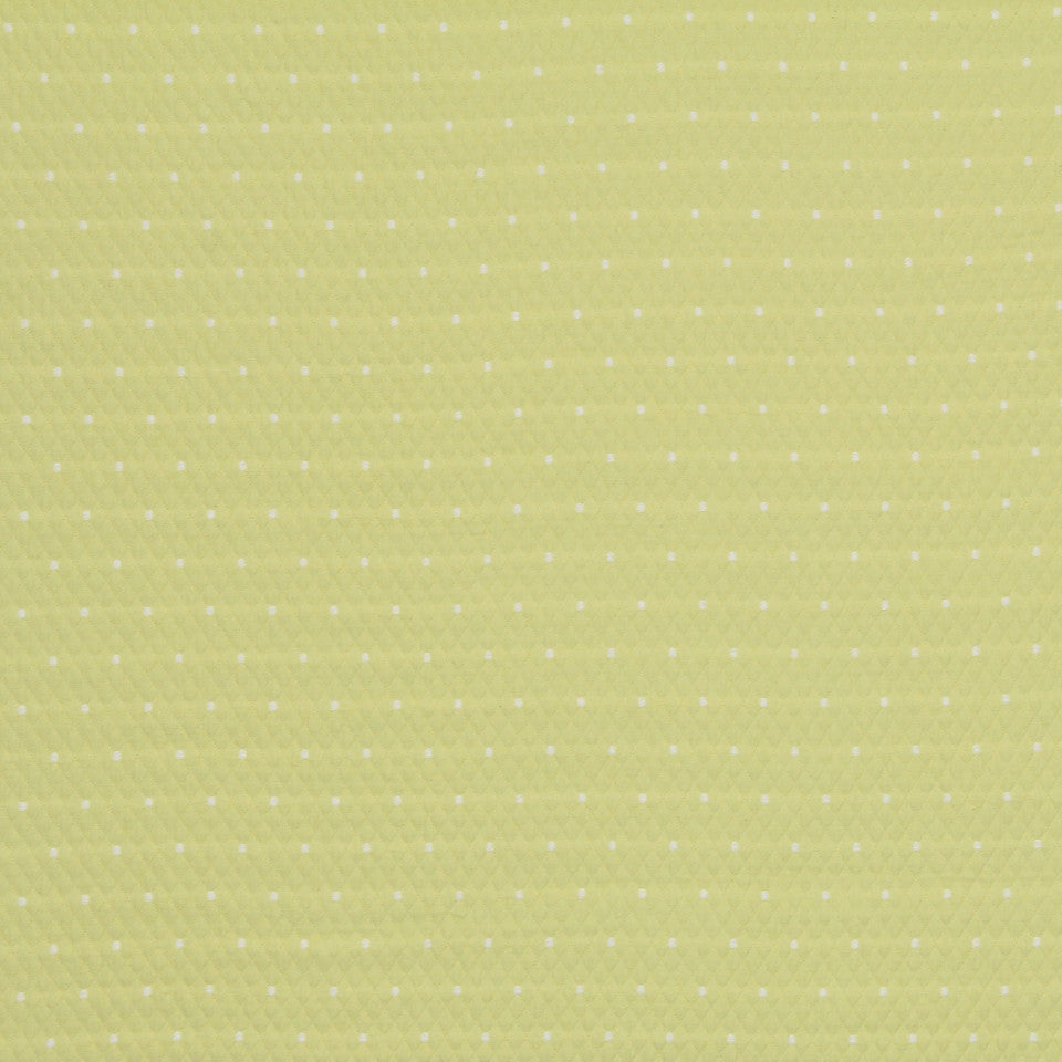 MATELASSES Diamas Dot Fabric - Citrus