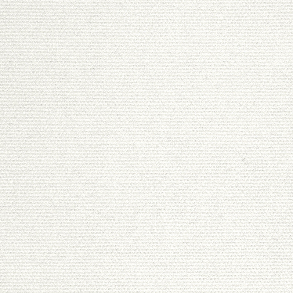 COTTON SOLIDS Open Prairie Fabric - White