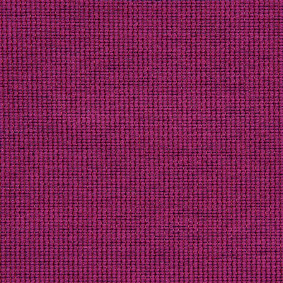 FUCHSIA Cotton Loop Fabric - Fuchsia