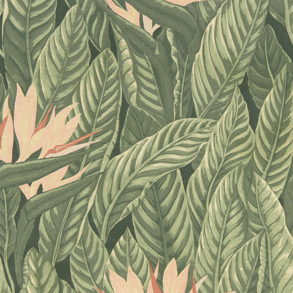 CORAL Paradise Frond Fabric - Coral