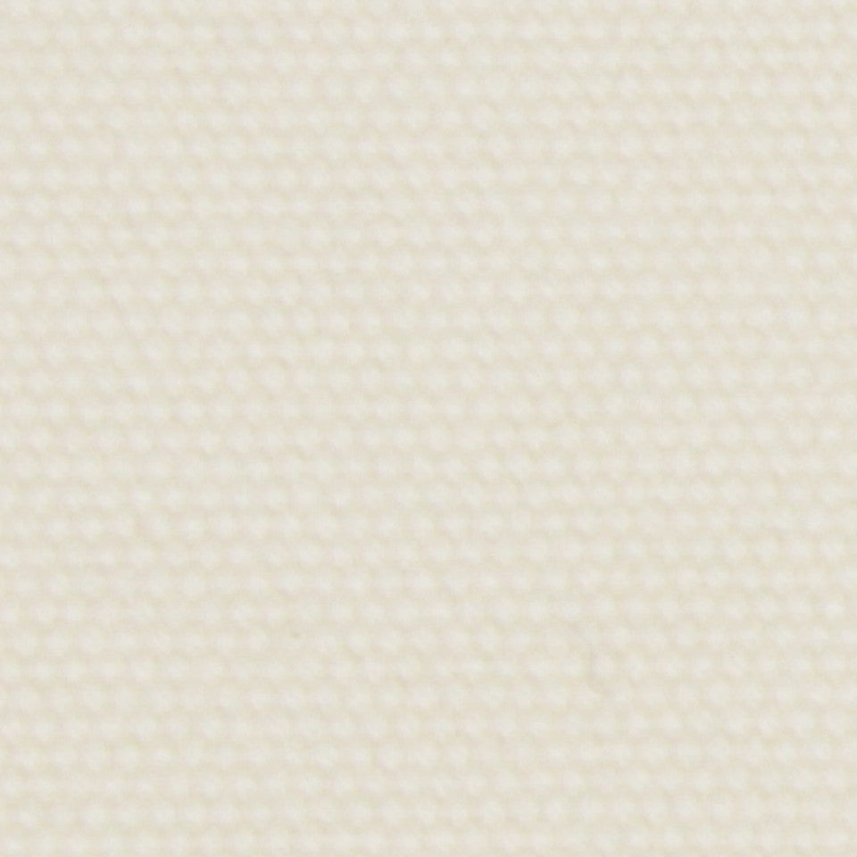 COTTON SOLIDS Open Prairie Fabric - Pale Cream