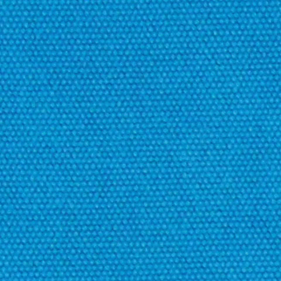 COTTON SOLIDS Open Prairie Fabric - Parrot