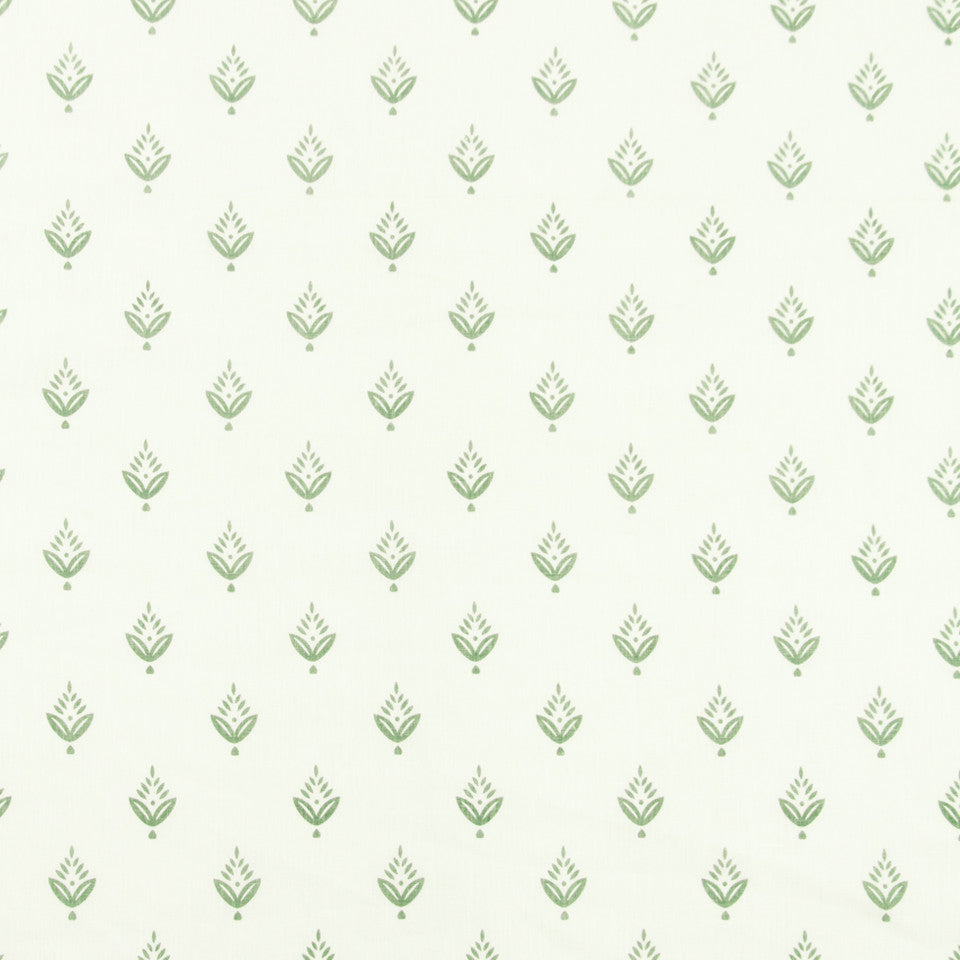 FOUNTAIN-DEW-SEA Ponderosa Pine Fabric - Dew