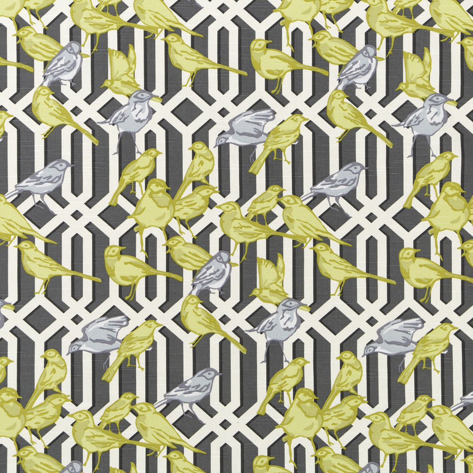 DWELLSTUDIO MODERN ARCHIVE Aviary Trellis Fabric - Graphite