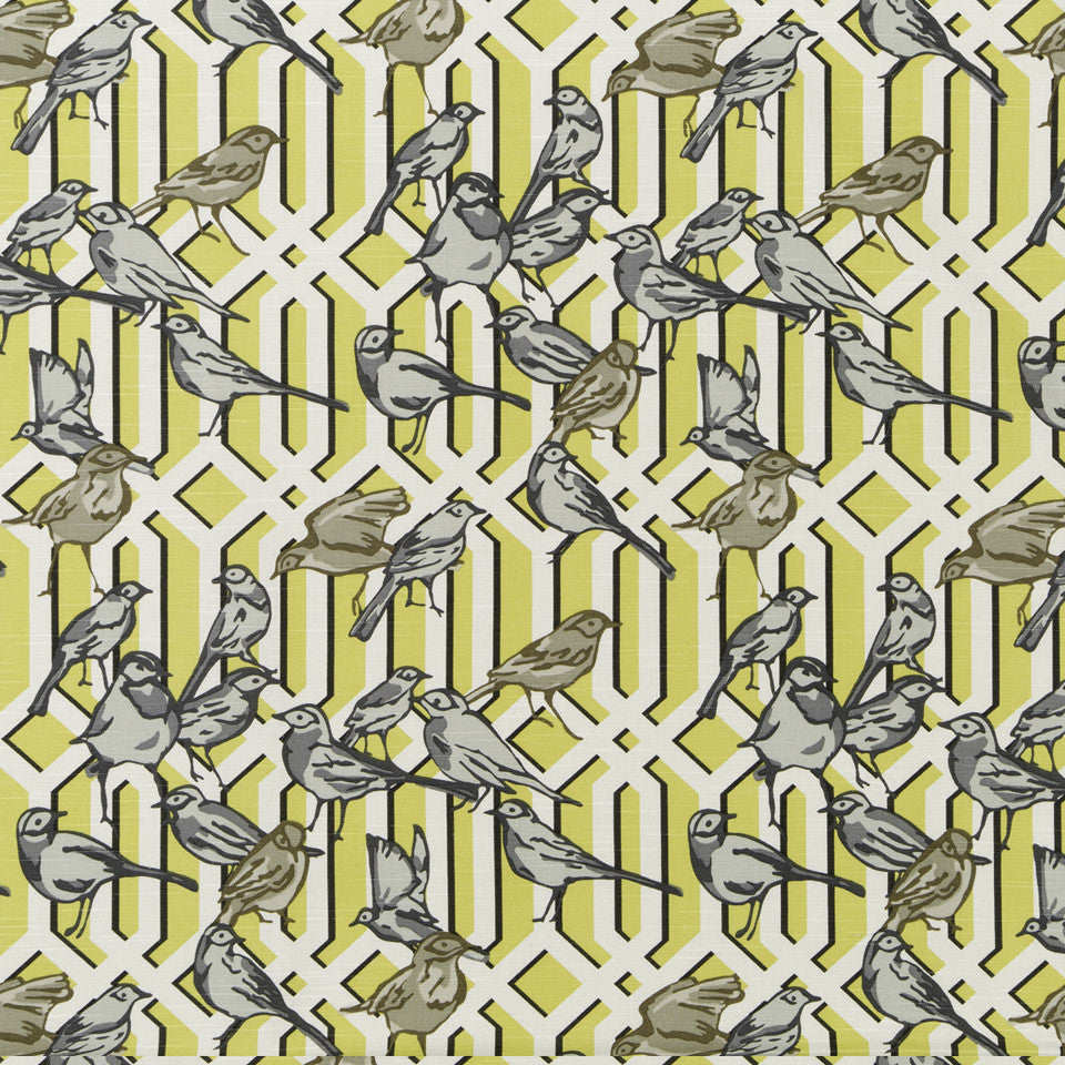 DWELLSTUDIO MODERN ARCHIVE Aviary Trellis Fabric - Citrine