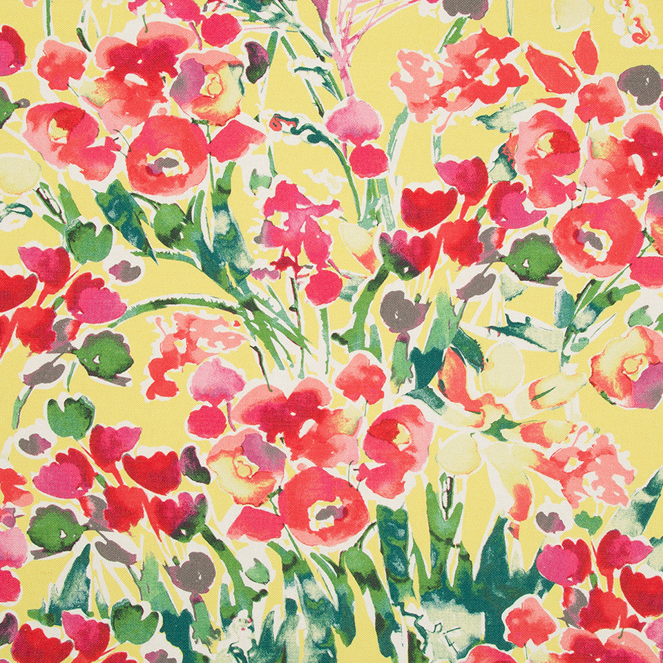 DWELLSTUDIO MODERN ARCHIVE Severine Fabric - Poppy