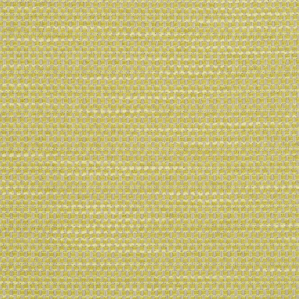 Primotex BK Fabric - Zest
