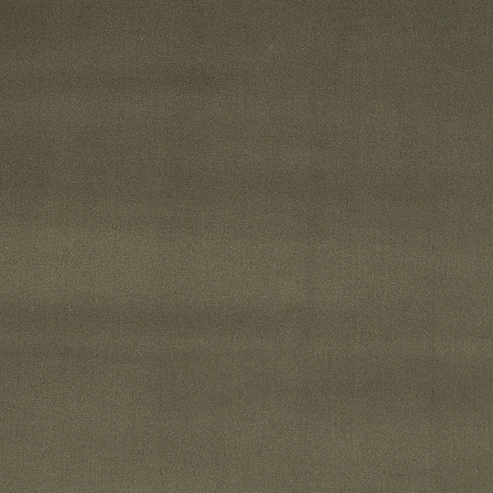 COTTON VELVET SOLIDS Torino Velvet Fabric - Stone