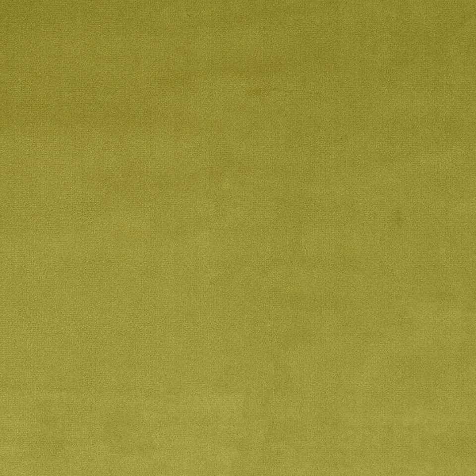 COTTON VELVET SOLIDS Torino Velvet Fabric - Chartreuse