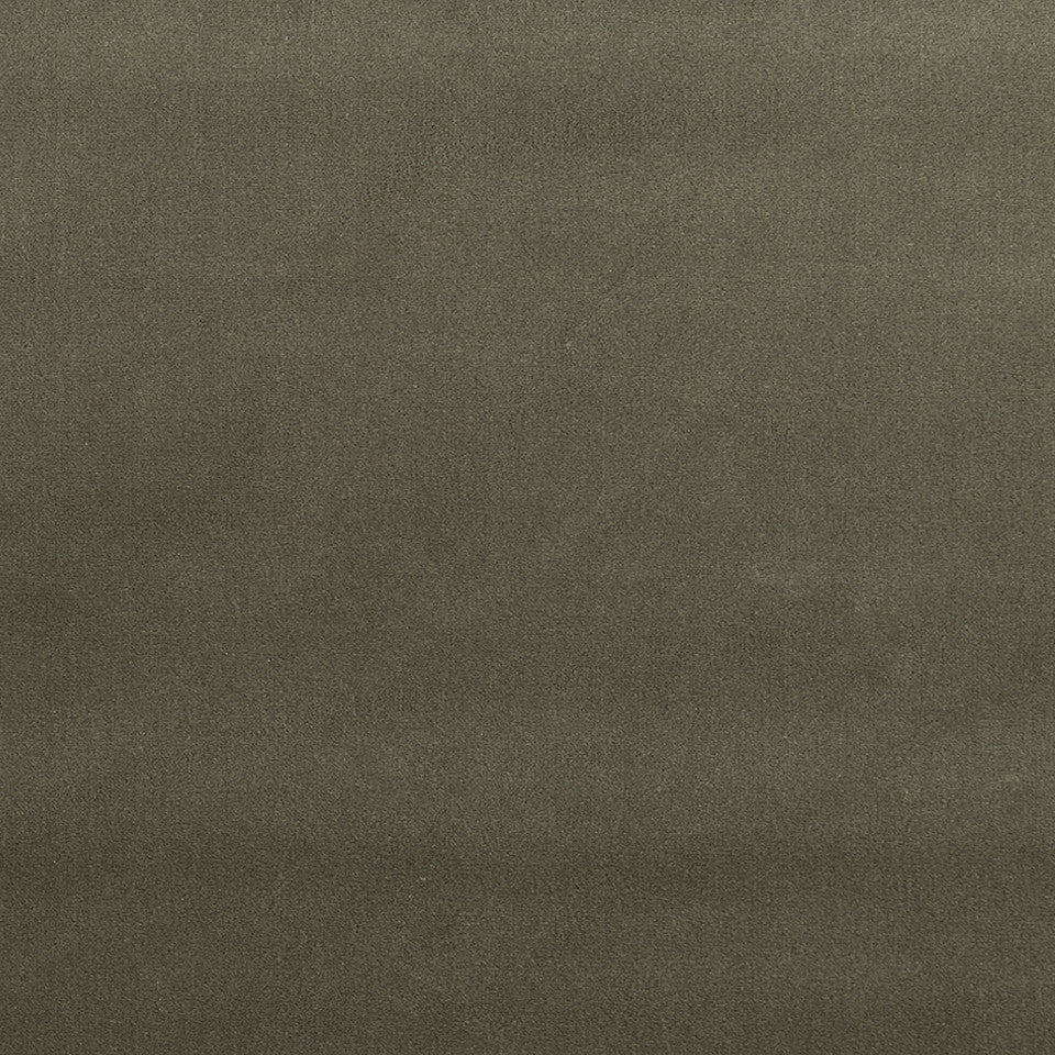 COTTON VELVET SOLIDS Torino Velvet Fabric - Ash