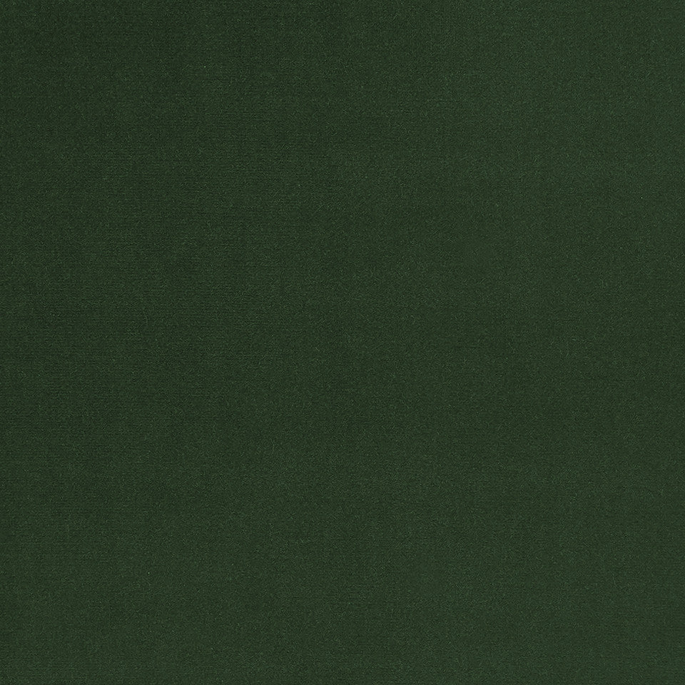 COTTON VELVET SOLIDS Lady Elsie Fabric - Evergreen