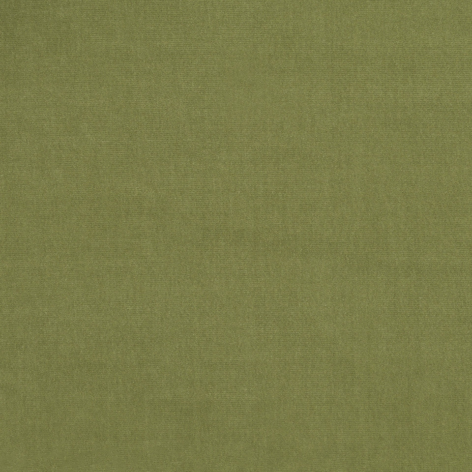 COTTON VELVET SOLIDS Lady Elsie Fabric - Peapod