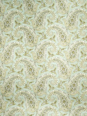New Paisley Fabric - Dew