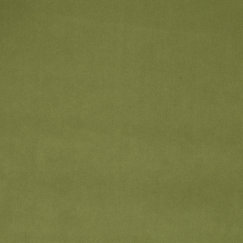 DURABLE VELVETS Forever Velvet Fabric - Apple Green
