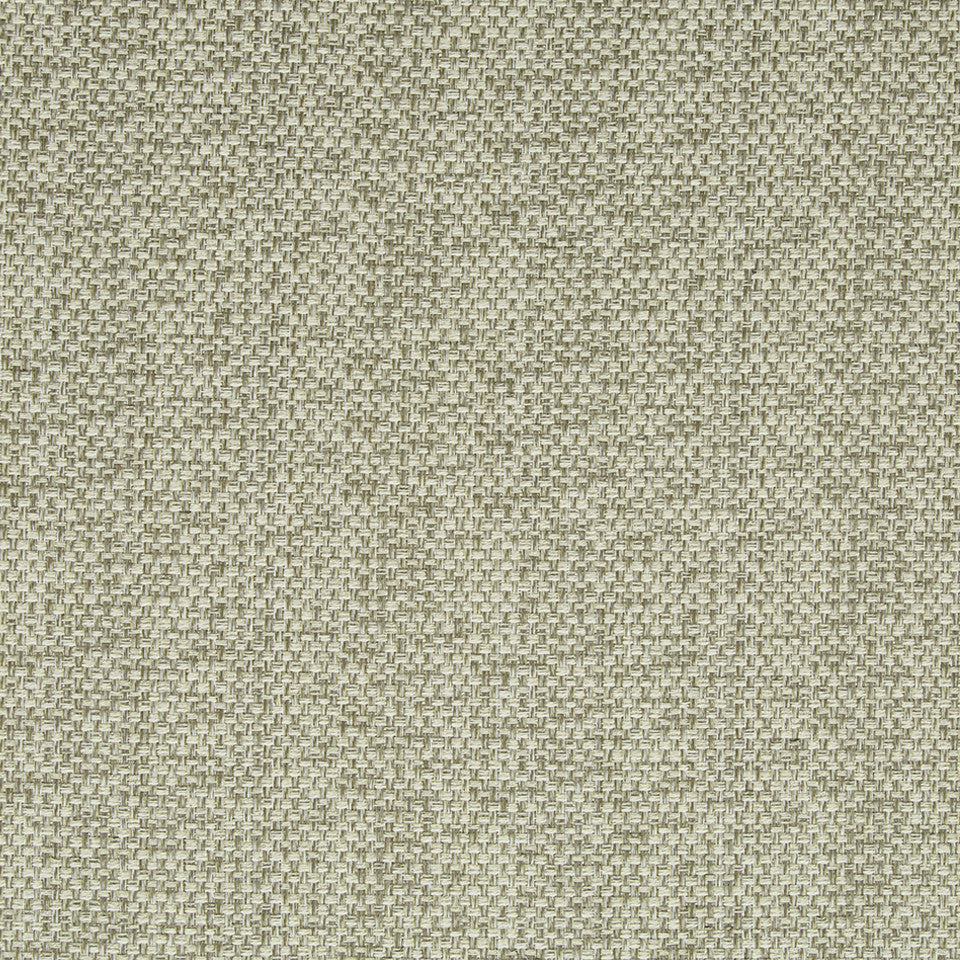 DRIFTWOOD Scamp Fabric - Driftwood